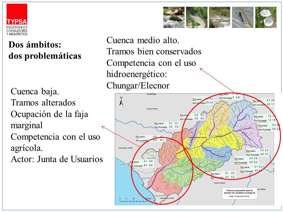 Cuenca medio alto. Tramos bien conservados. Competencia con el uso hidroenergético: Chungar/Elecnor.