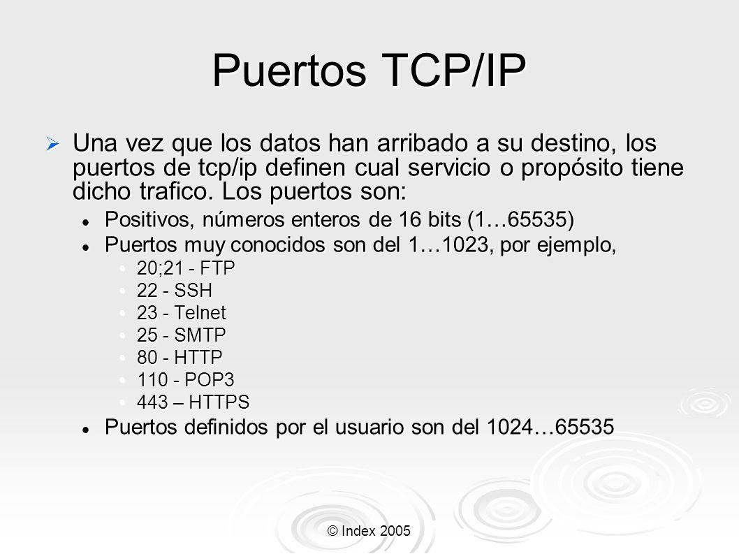 Puertos TCP/IP