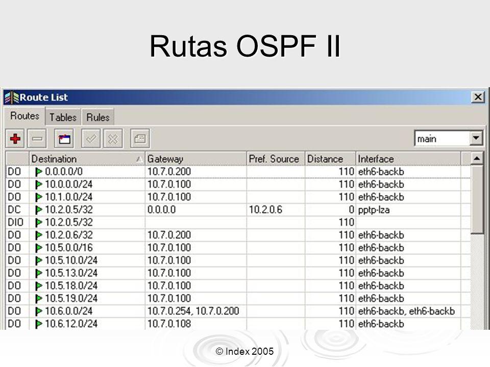 Rutas OSPF II © Index 2005