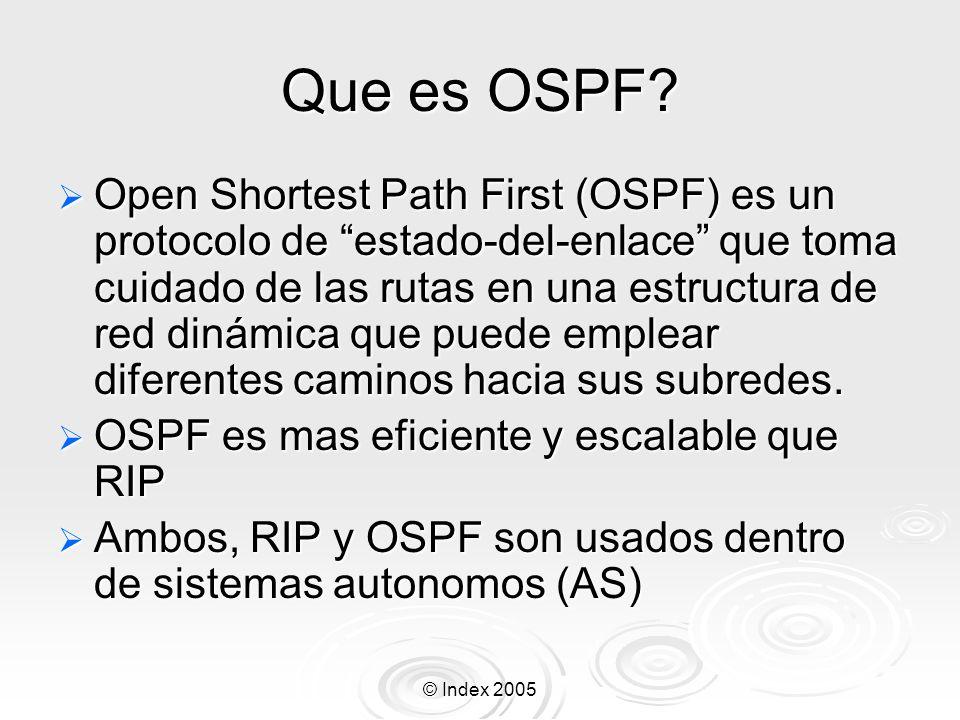 Que es OSPF
