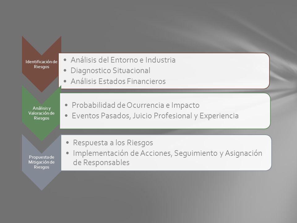 Identificación de Riesgos Análisis del Entorno e Industria