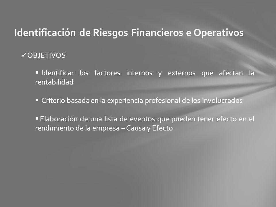 Identificación de Riesgos Financieros e Operativos