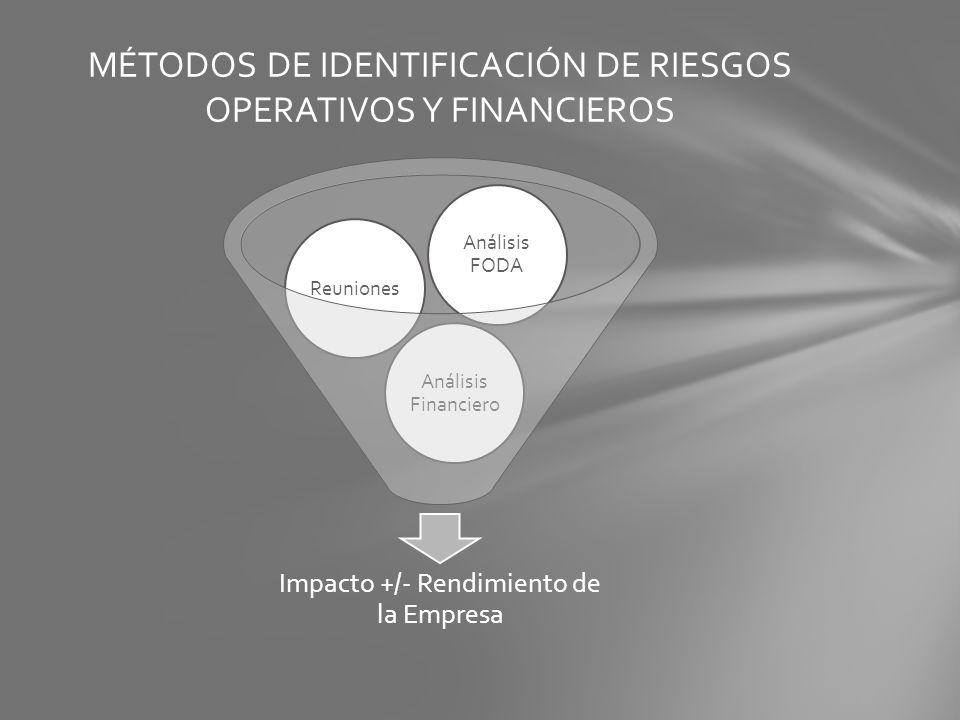 MÉTODOS DE IDENTIFICACIÓN DE RIESGOS OPERATIVOS Y FINANCIEROS
