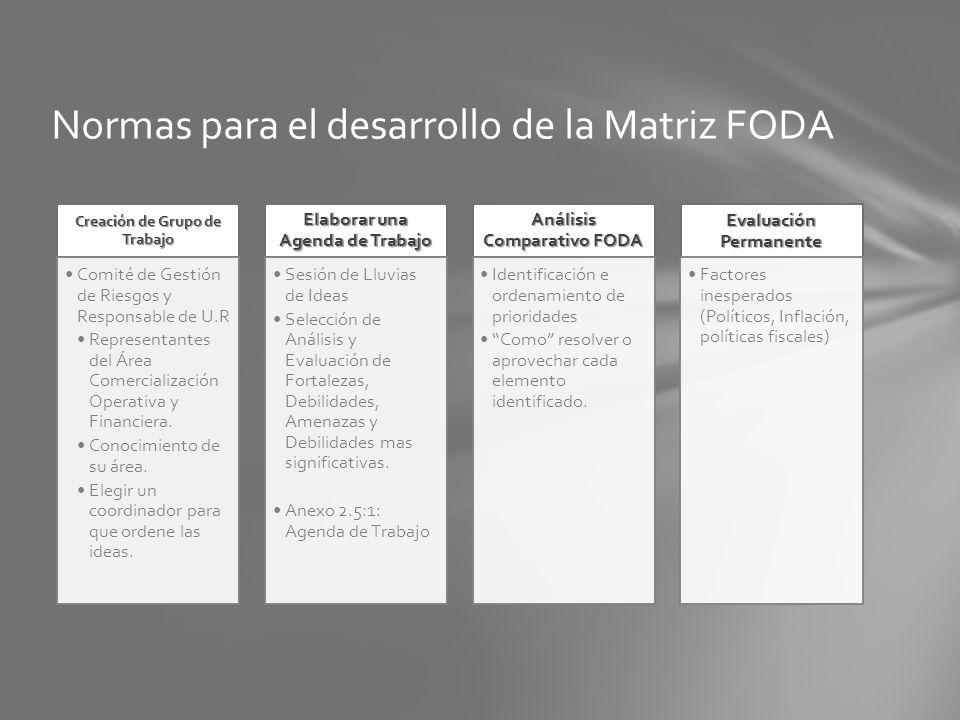 Normas para el desarrollo de la Matriz FODA