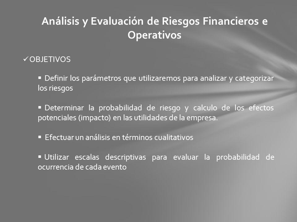 Análisis y Evaluación de Riesgos Financieros e Operativos