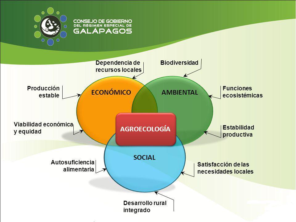 ECONÓMICO AMBIENTAL AGROECOLOGÍA SOCIAL