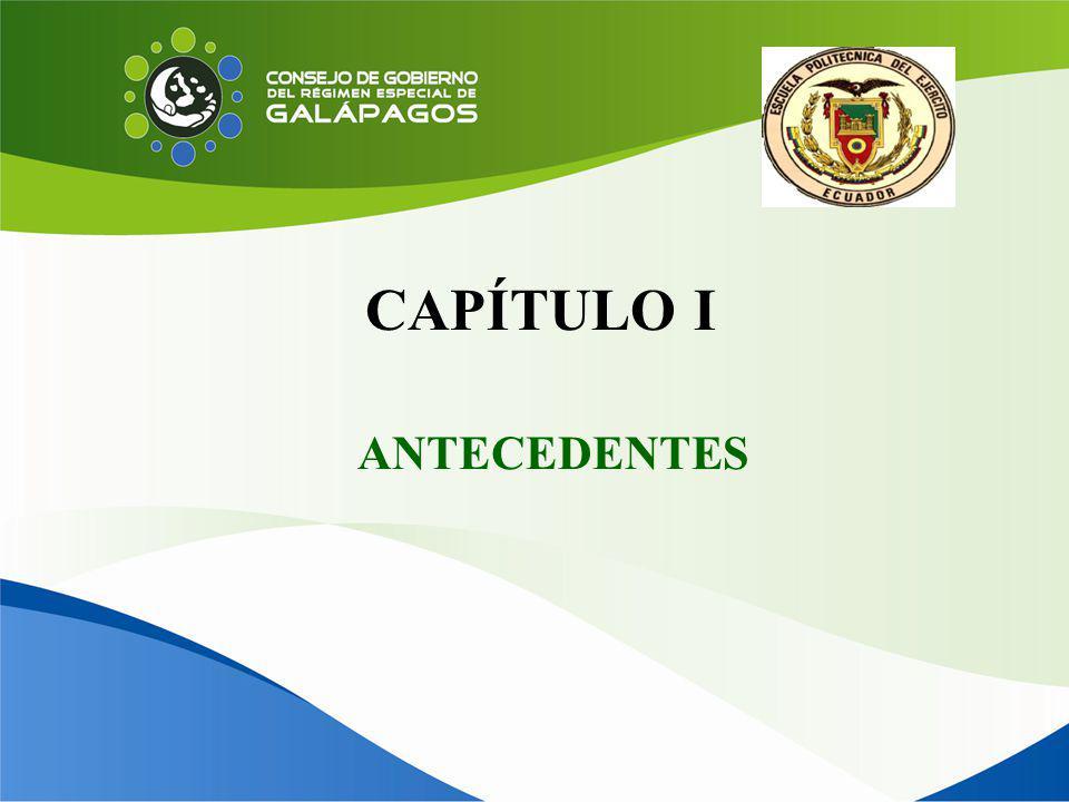 CAPÍTULO I ANTECEDENTES
