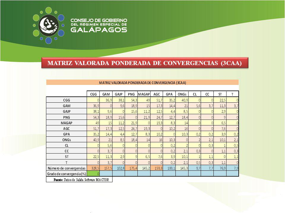 MATRIZ VALORADA PONDERADA DE CONVERGENCIAS (3CAA)