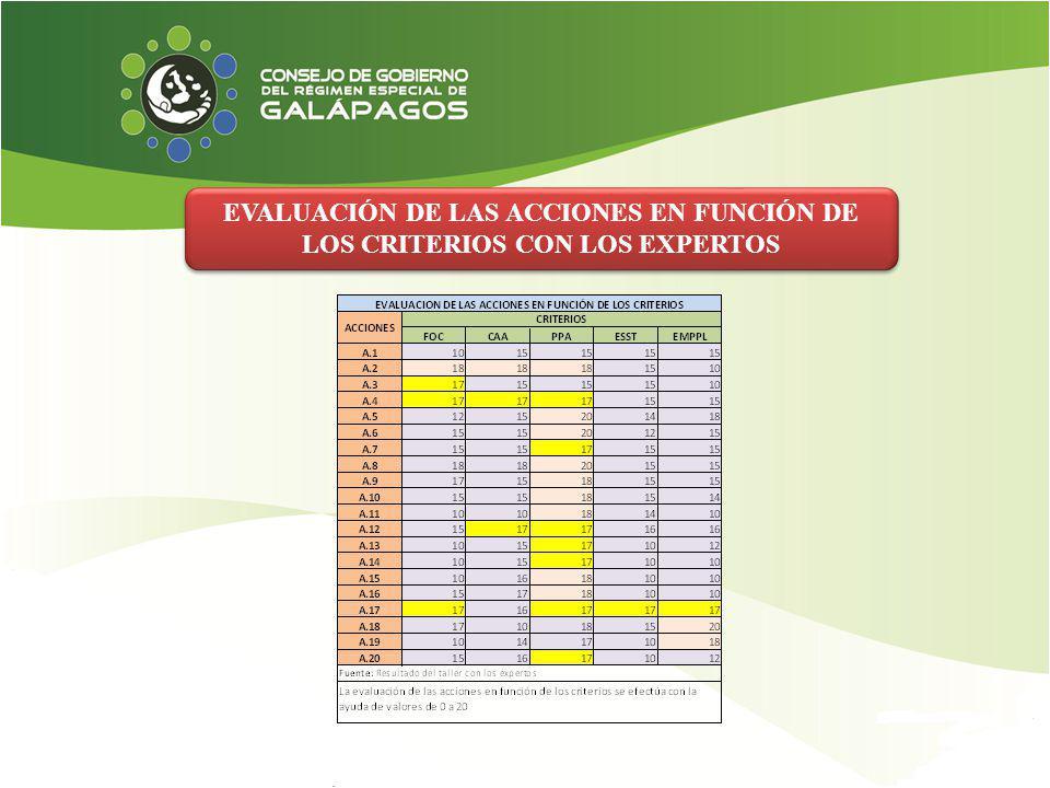 EVALUACIÓN DE LAS ACCIONES EN FUNCIÓN DE LOS CRITERIOS CON LOS EXPERTOS