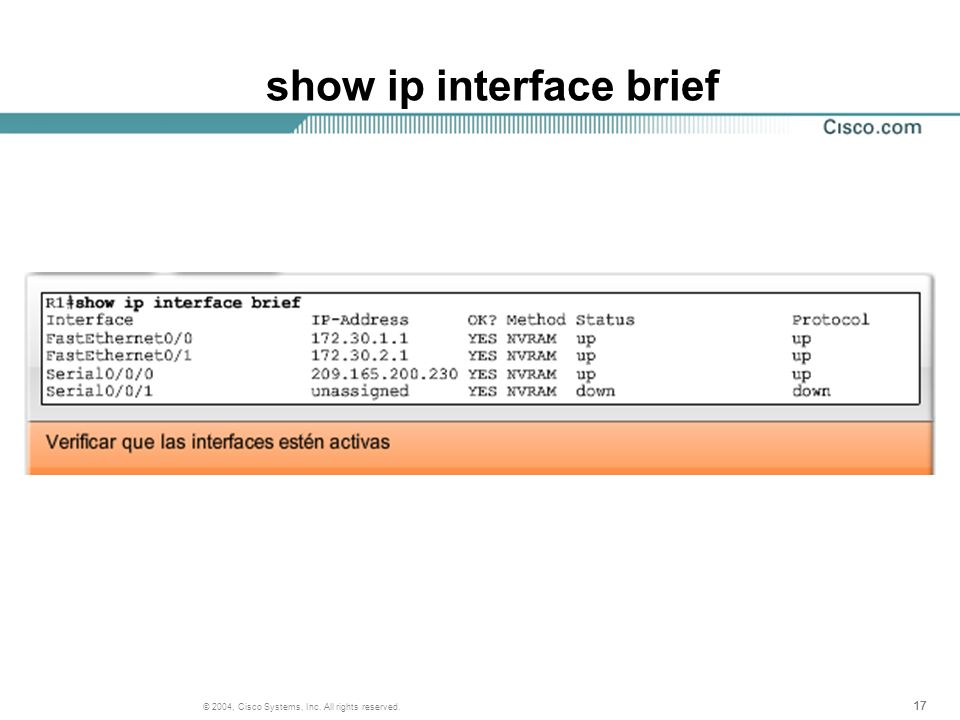 show ip interface brief