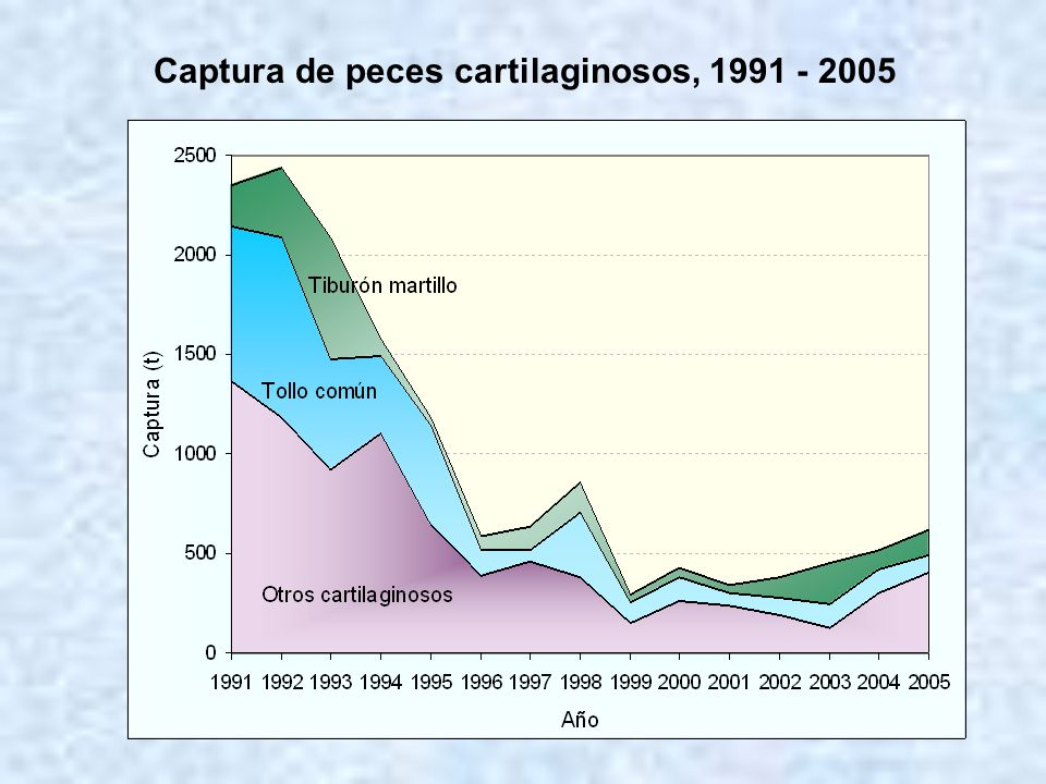 Captura de peces cartilaginosos, 1991 - 2005