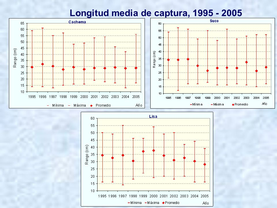 Longitud media de captura, 1995 - 2005