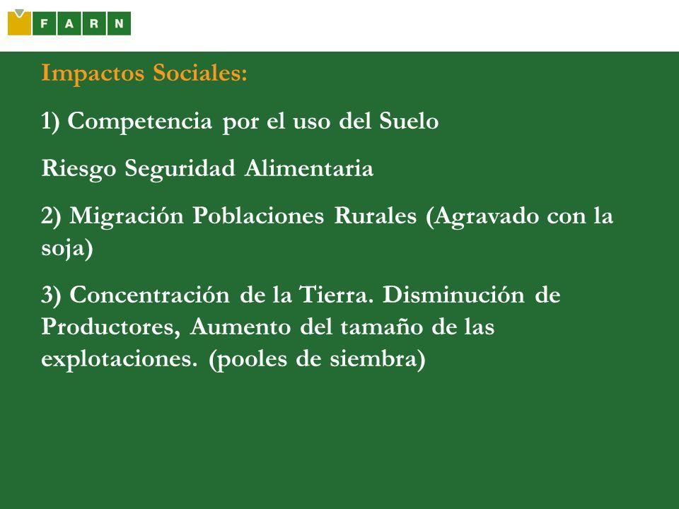 Impactos Sociales:1) Competencia por el uso del Suelo. Riesgo Seguridad Alimentaria. 2) Migración Poblaciones Rurales (Agravado con la soja)