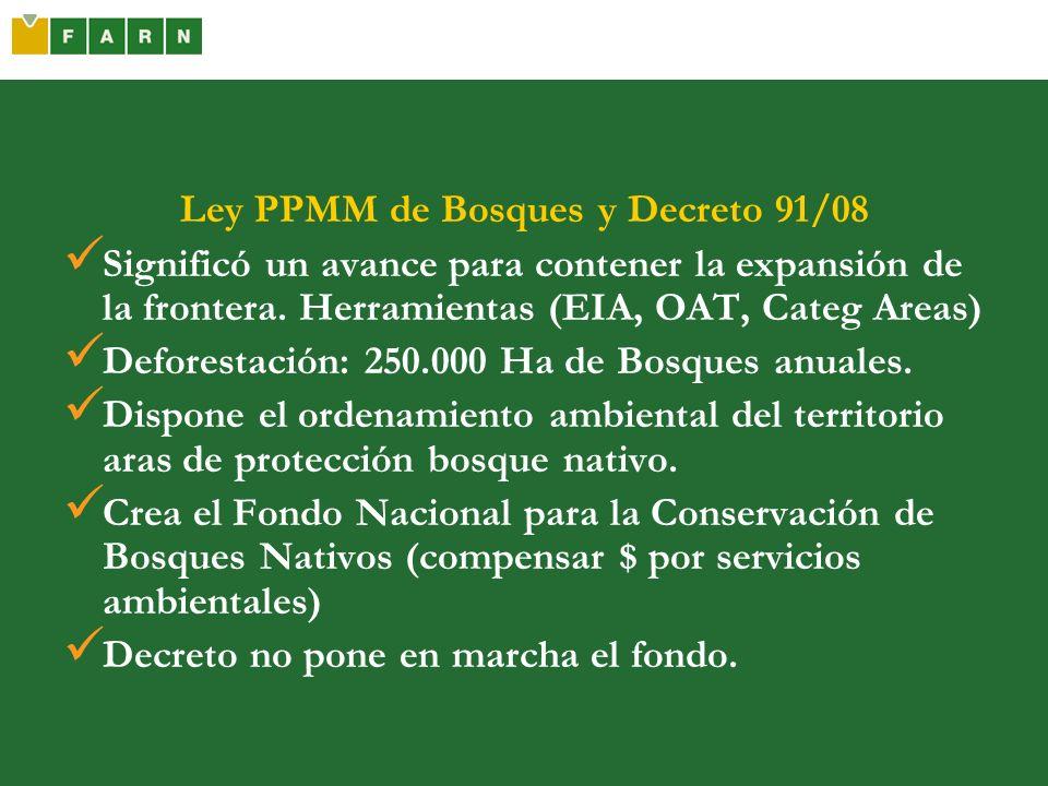 Ley PPMM de Bosques y Decreto 91/08