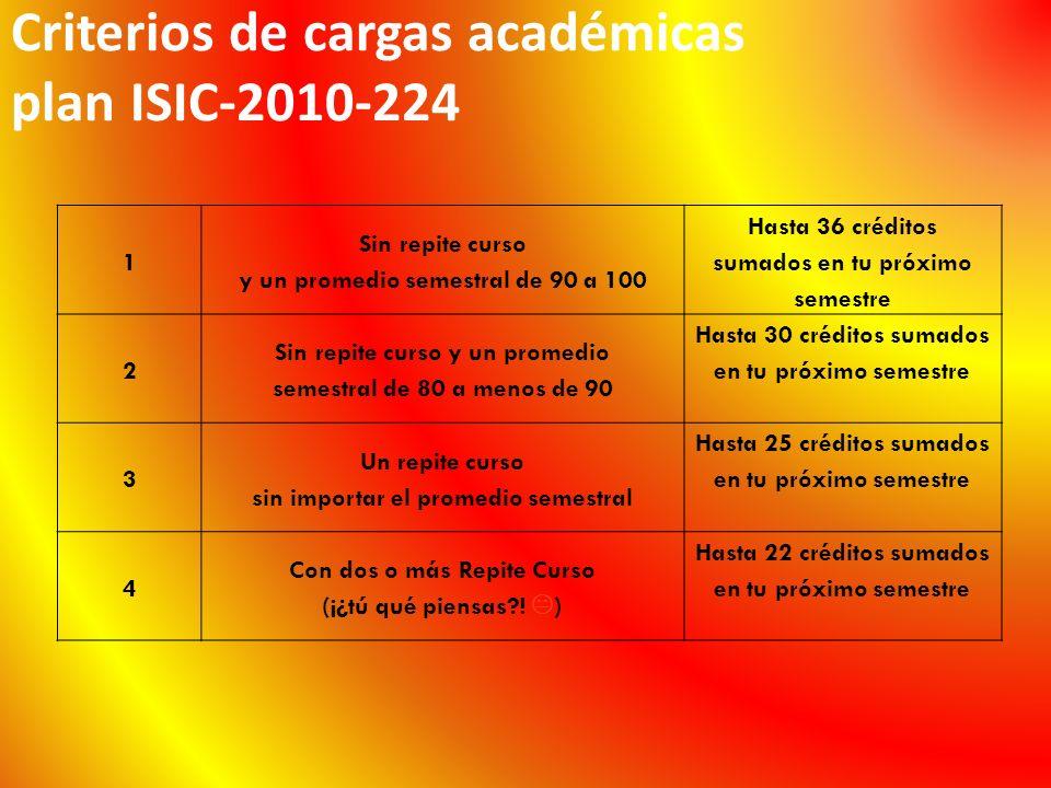 Criterios de cargas académicas plan ISIC-2010-224