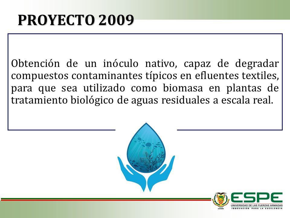 PROYECTO 2009