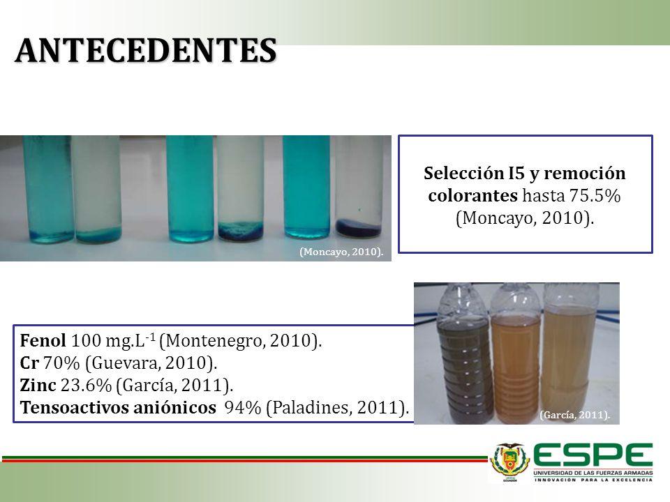 Selección I5 y remoción colorantes hasta 75.5% (Moncayo, 2010).