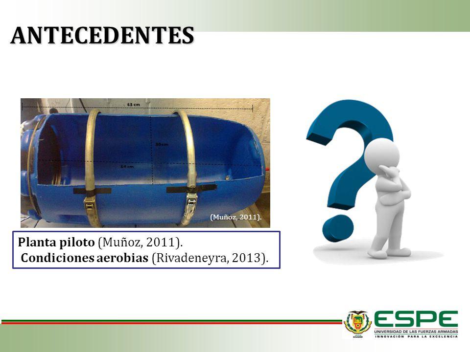 ANTECEDENTES ANTECEDENTES Planta piloto (Muñoz, 2011).