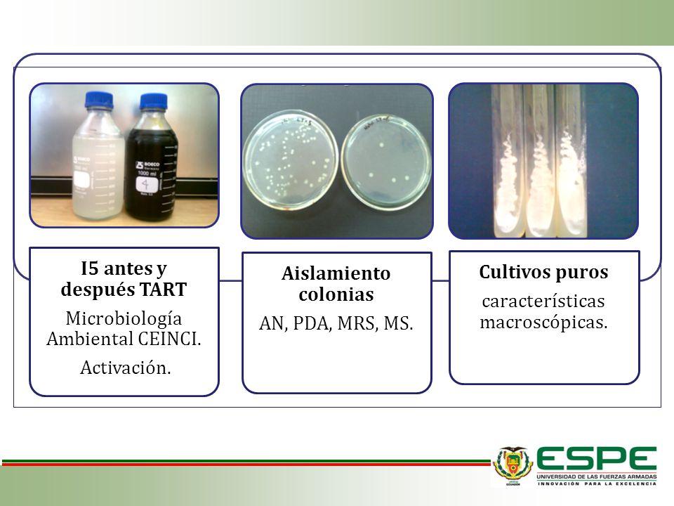 Microbiología Ambiental CEINCI.