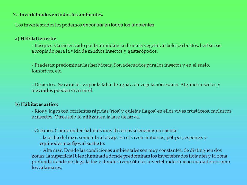 7.- Invertebrados en todos los ambientes.