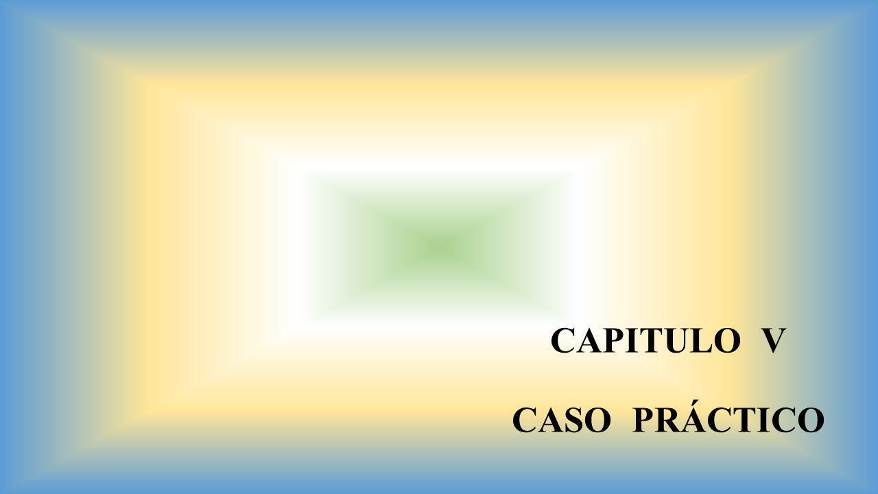 CAPITULO V CASO PRÁCTICO