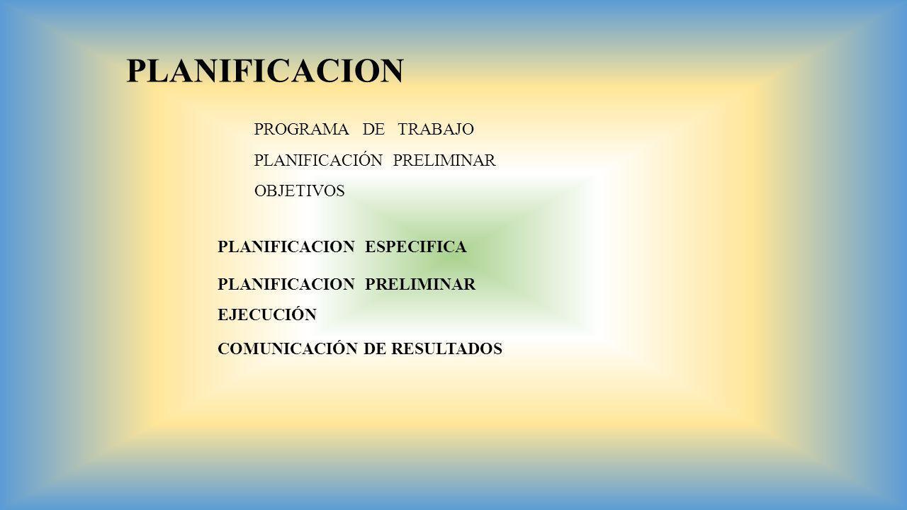 PLANIFICACION PROGRAMA DE TRABAJO PLANIFICACIÓN PRELIMINAR OBJETIVOS