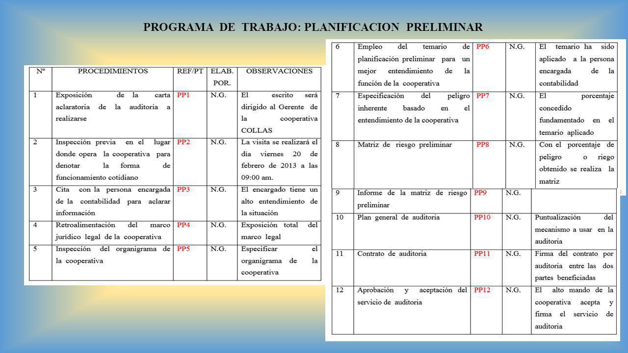 PROGRAMA DE TRABAJO: PLANIFICACION PRELIMINAR