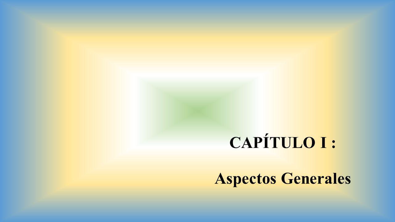 CAPÍTULO I : Aspectos Generales