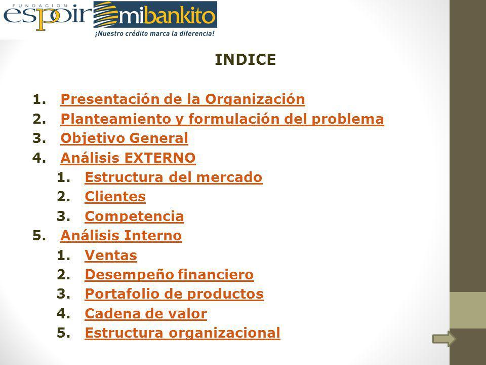 INDICE Presentación de la Organización