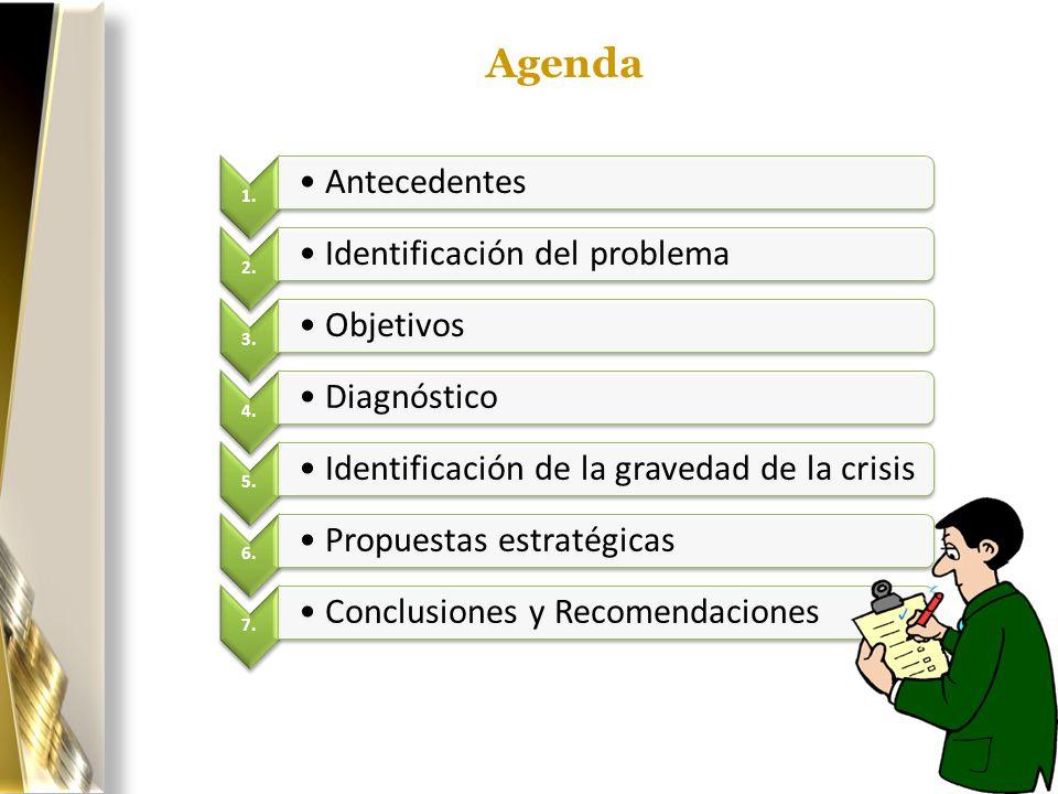 Agenda Antecedentes Identificación del problema Objetivos Diagnóstico