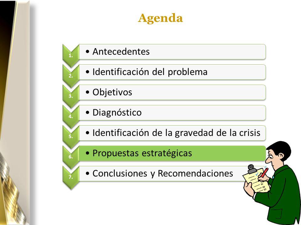 Agenda 1. Antecedentes. 2. Identificación del problema. 3. Objetivos. 4. Diagnóstico. 5. Identificación de la gravedad de la crisis.