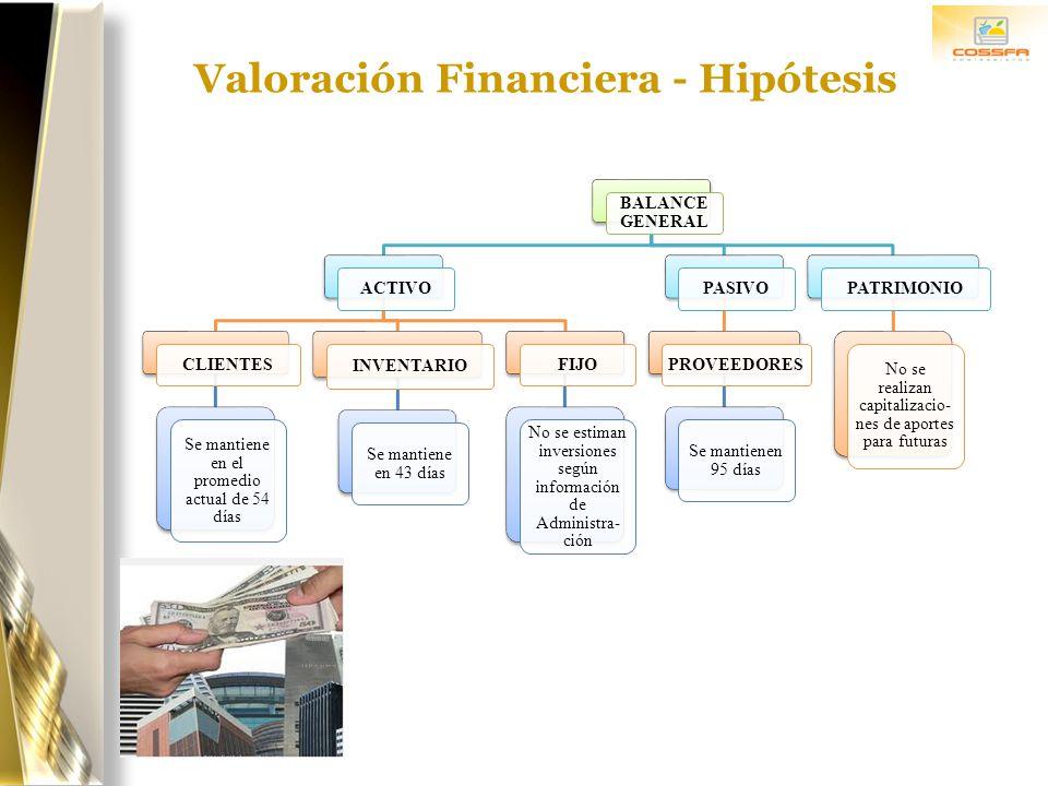 Valoración Financiera - Hipótesis