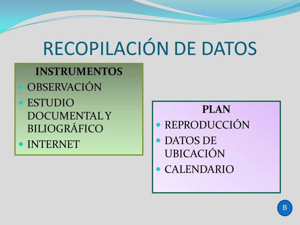 RECOPILACIÓN DE DATOS INSTRUMENTOS OBSERVACIÓN