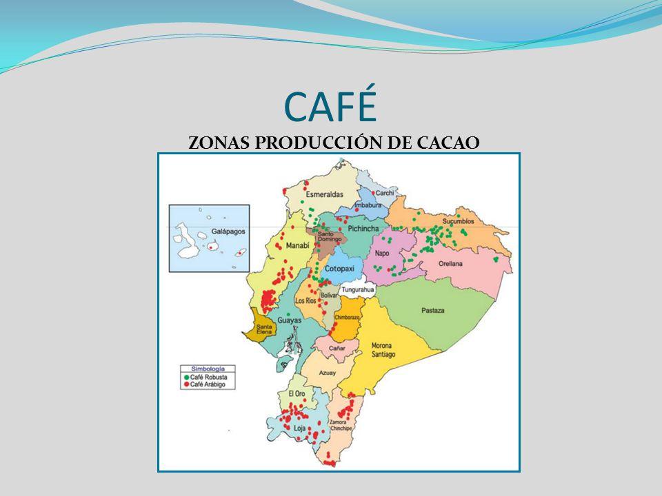 ZONAS PRODUCCIÓN DE CACAO