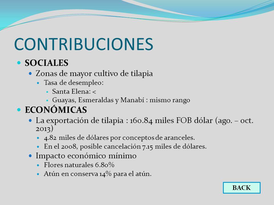 CONTRIBUCIONES SOCIALES ECONÓMICAS Zonas de mayor cultivo de tilapia