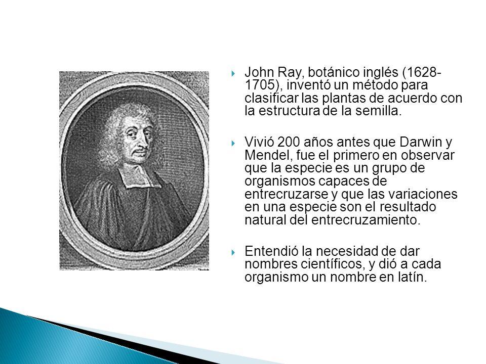 John Ray, botánico inglés (1628- 1705), inventó un método para clasificar las plantas de acuerdo con la estructura de la semilla.