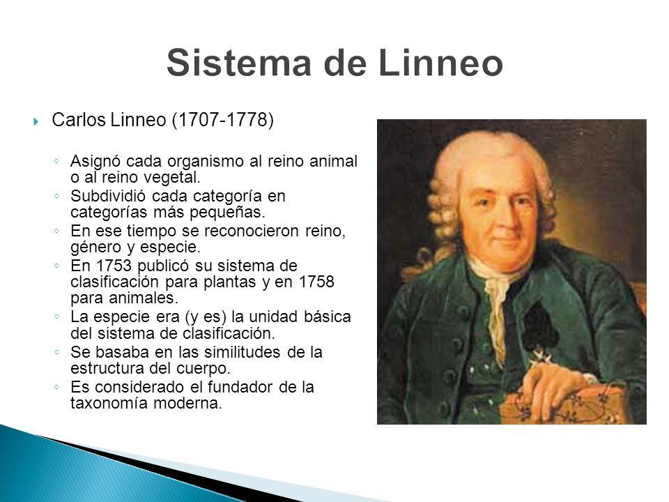 Sistema de Linneo Carlos Linneo (1707-1778)