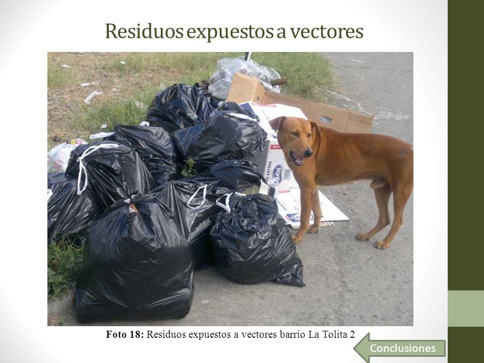 Residuos expuestos a vectores