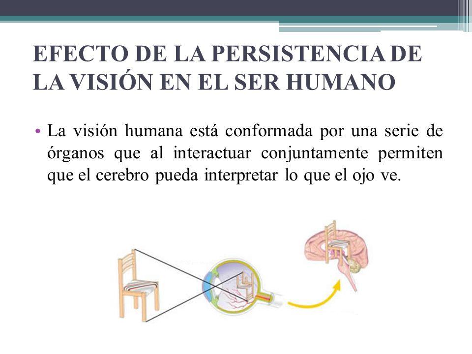 EFECTO DE LA PERSISTENCIA DE LA VISIÓN EN EL SER HUMANO