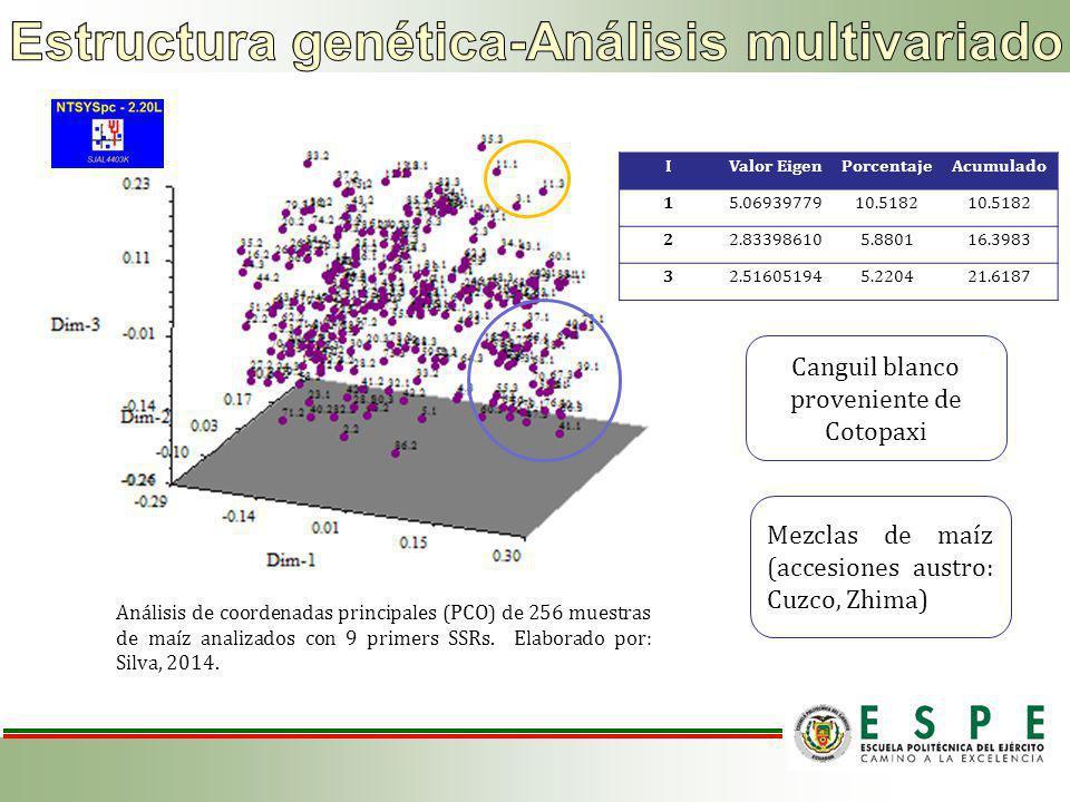 Estructura genética-Análisis multivariado