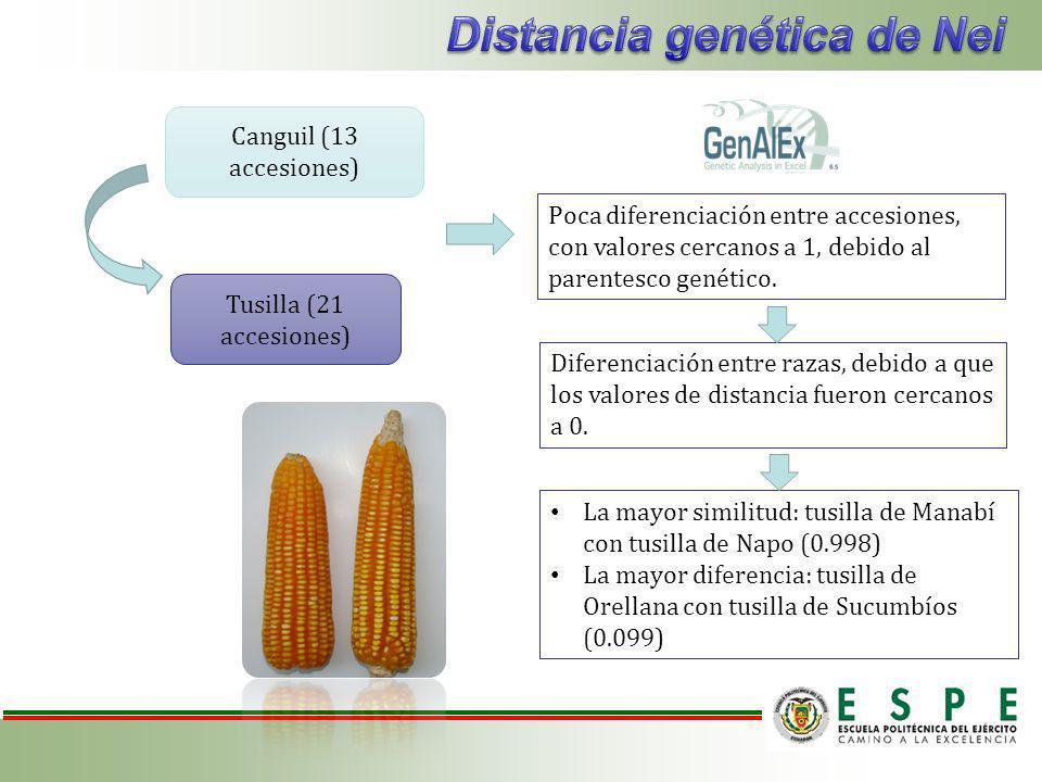 Distancia genética de Nei