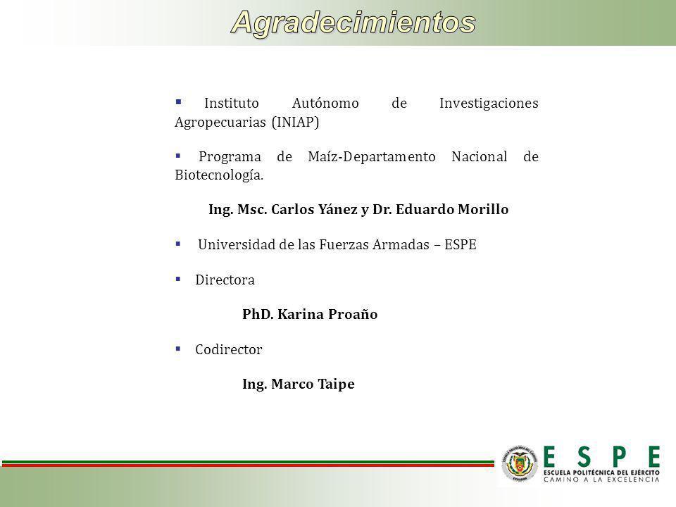 Agradecimientos Instituto Autónomo de Investigaciones Agropecuarias (INIAP) Programa de Maíz-Departamento Nacional de Biotecnología.