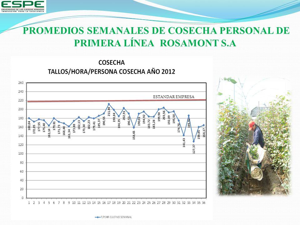 PROMEDIOS SEMANALES DE COSECHA PERSONAL DE PRIMERA LÍNEA ROSAMONT S.A