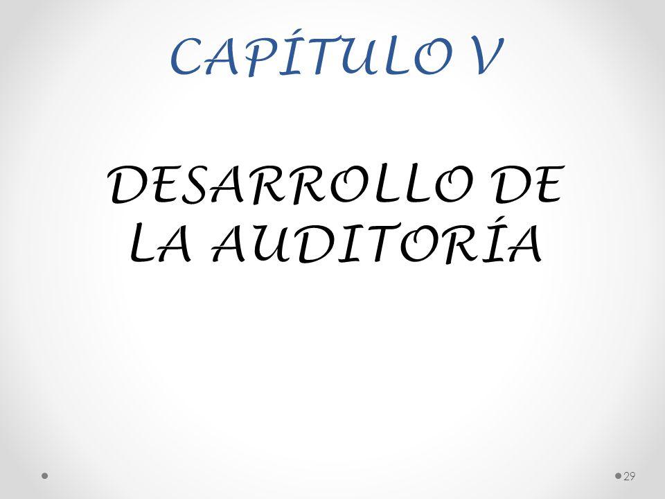 DESARROLLO DE LA AUDITORÍA
