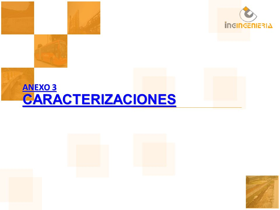 ANEXO 3 CARACTERIZACIONES