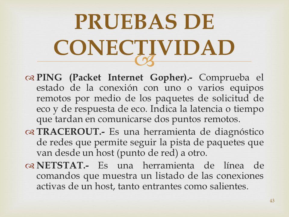 PRUEBAS DE CONECTIVIDAD
