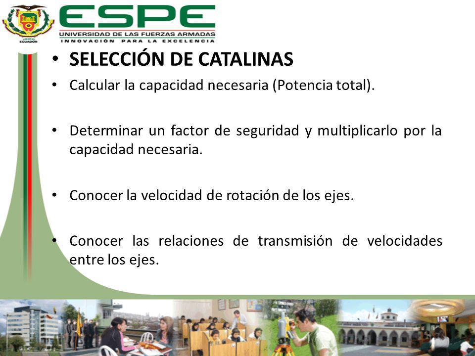SELECCIÓN DE CATALINAS