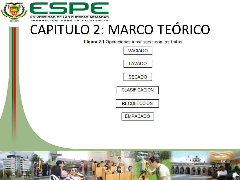 CAPITULO 2: MARCO TEÓRICO