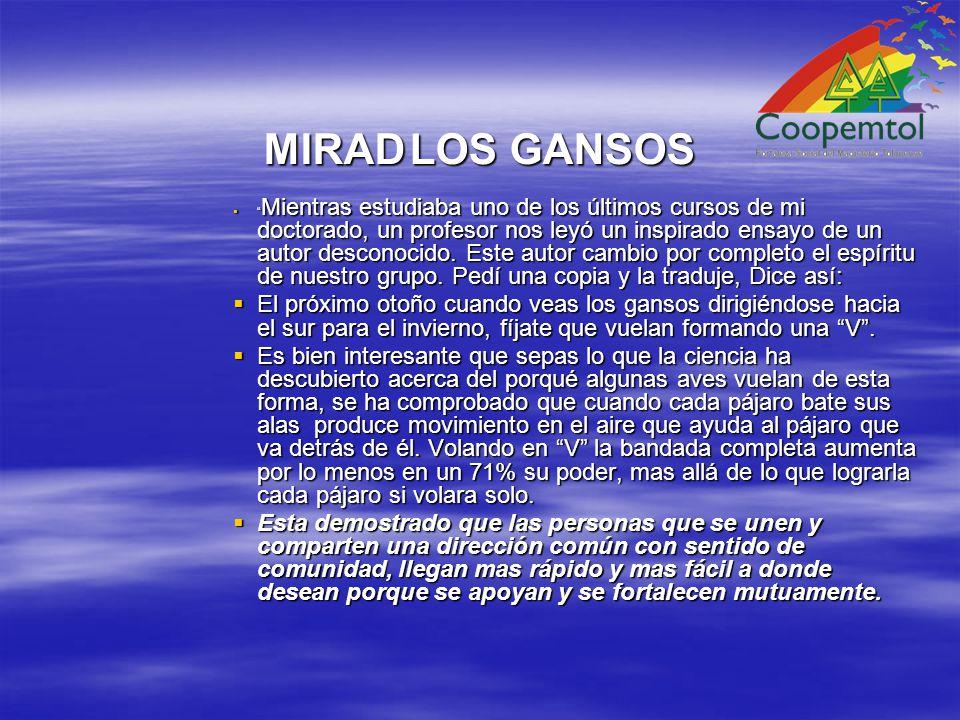 MIRAD LOS GANSOS
