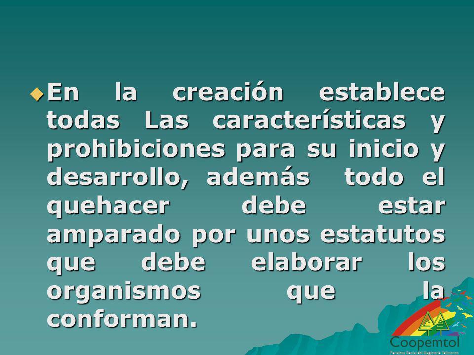 En la creación establece todas Las características y prohibiciones para su inicio y desarrollo, además todo el quehacer debe estar amparado por unos estatutos que debe elaborar los organismos que la conforman.